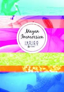 Indigo brochure Front page